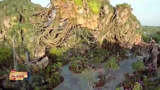 Travel To The World of Avatar - Video