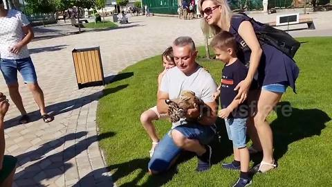 Tourists pose for pictures with frightened tiger cub in Ukranian zoo