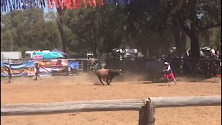 Close Call for the Clown at Boddington Rodeo, Western Australia