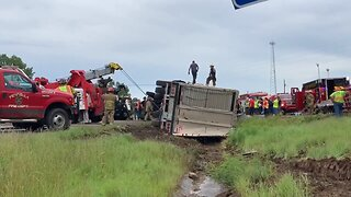 Fire Crews Free Cattle and Driver Trapped in Overturned Truck