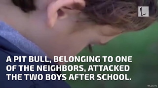 Teen Saves Brother from Pit Bull - Video