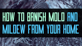 How to Banish Mold and Mildew from Your Home - Video