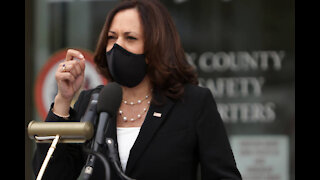 Positive COVID-19 Tests Halt Kamala Harris' In-Person Campaigning, For Now