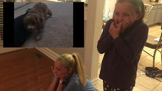 Kids have emotional response to new puppy surprise