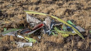 Some Boeing 737 MAX 8s Grounded After Ethiopia Crash Horror