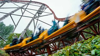 Woman Dies Falling From Roller Coaster