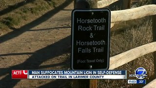 Horsetooth Mountain trail runner suffocates, kills mountain lion in self defense