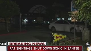 Rat sightings shut down Sonic in Santee - Video