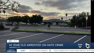 14 year old arrested for rabbi assault