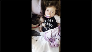 Pit Bull preciously snuggles with toddler