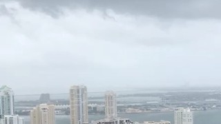 Rain, Strong Winds Lash Miami as Outer Bands of Irma Approach - Video