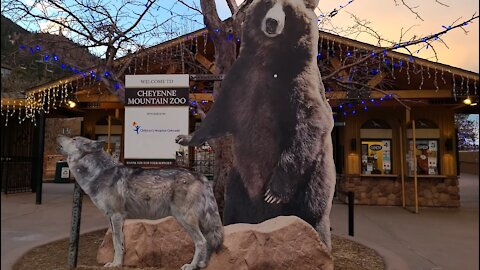 Cheyenne Mountain Zoo Christmas Decorations