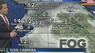 Dense fog advisory until 9am for all of Tampa Bay area - Video