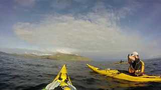 Kayakers Spot Basking Shark Near the Irish Coast - Video