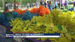 Exploring the Promise Garden at Walk to End Alzheimer's - Video