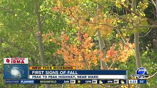 First signs of fall showing in high country - Video