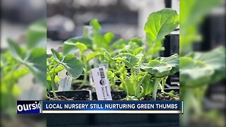 We're Open: North End Organic Nursery still nurturing green thumbs of Boise garden enthusiasts