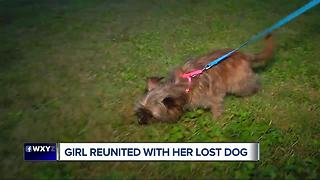 Girl reunited with her lost dog - Video