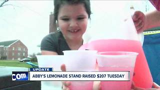 Abby's lemonade stand raises more than $200 - Video