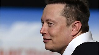 Tesla Pays Musk $1 Million To Insure Board