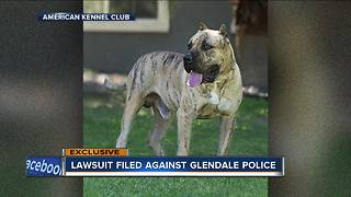 Woman files $2,000,000 lawsuit against Glendale Police