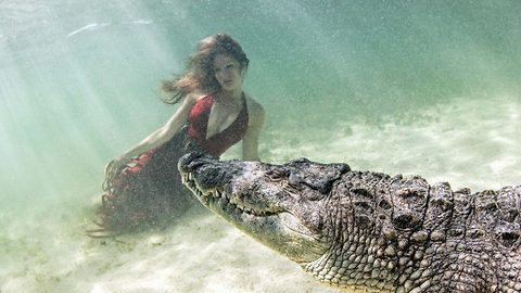 Crocodiles give huge toothy grins as they pose with brave models in incredible underwater snaps