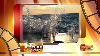 Art's Cameras Plus Picture of the Day for September 8!