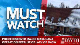 Police discover major marijuana operation because of lack of snow - Video