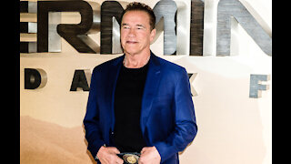Arnold Schwarzenegger didn't expect his daughter to marry an actor