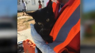 2 people, cat saved from WPB home during fire - Video