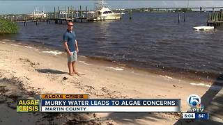 People fearful of algae blooms from Lake Okeechobee discharge - Video