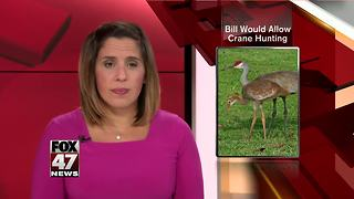 Bill to allow Sandhill crane hunting advances - Video