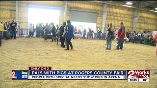 Pals with pigs at Rogers County Fair