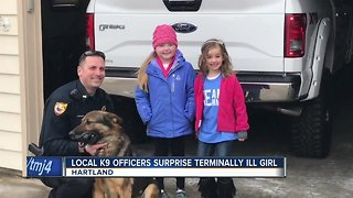 Hartland girl fighting brain tumor gets surprise visit from K9 units