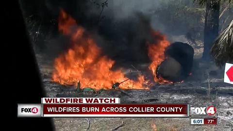 Wildfires expand to 7,000 acres in Southwest Florida