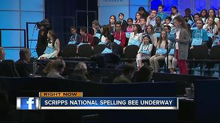 Bay Area students compete in Spelling Bee - Video
