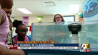 Newport Aquarium brings sea creatures to classes