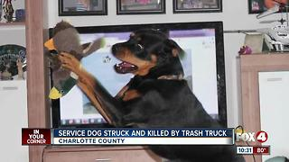 Truck kills service dog - Video