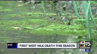 Maricopa County confirms first West Nile death this season - Video