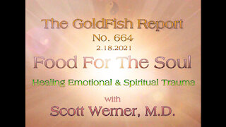 The GoldFish Report No. 664 - Healing Emotional and Spiritual Trauma w/ Dr. Scott Werner