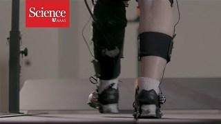 Watch a robotic exoskeleton help a stroke patient walk
