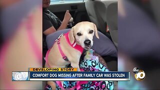Poway family pleading to find comfort dog, stolen with car in Northern California