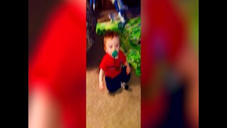 Squeaky Toy makes Baby want to Dance - Video