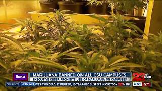 Cal State University Police: Marijuana not allowed on campus - Video
