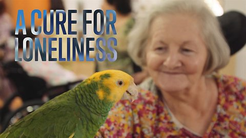 Animal Therapy: Helping the Elderly