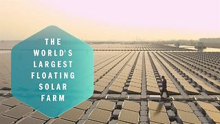The World's Largest Floating Solar Farm - Video