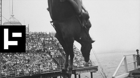 The High-Diving Horses That Risked Death Every Day to Entertain People