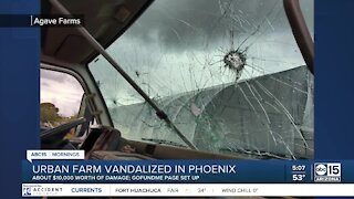 Agave Farms in Phoenix vandalized: How you can help