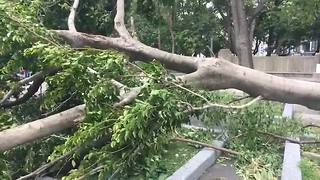 Aftermath of typhoon Nesat in Taipei, Taiwan - Video