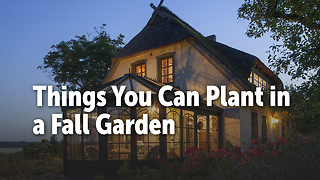 Things You Can Plant in a Fall Garden - Video